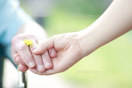 シニアの手をとるの写真素材 [FYI00449539]