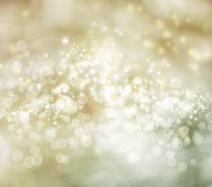 ベージュの光の背景の写真素材 [FYI00449555]