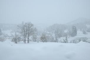 雪景色の素材 [FYI00449685]
