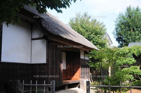 茅葺屋根の家の写真素材 [FYI00449784]