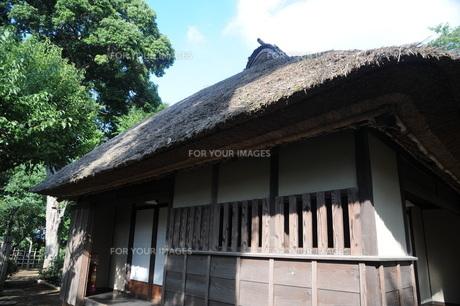 茅葺屋根の家の写真素材 [FYI00449788]