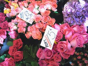 パリのお花屋さんの写真素材 [FYI00451106]