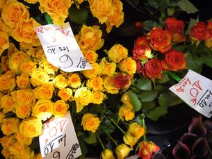 パリのお花屋さんの写真素材 [FYI00451120]