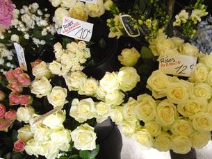 パリのお花屋さんの写真素材 [FYI00451132]