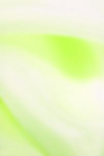 イエローグリーンの写真素材 [FYI00451177]
