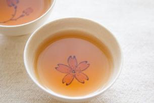 Tea timeの写真素材 [FYI00451349]