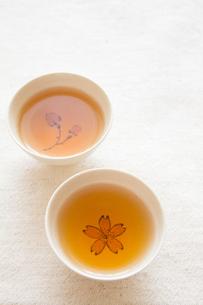 Tea timeの写真素材 [FYI00451350]