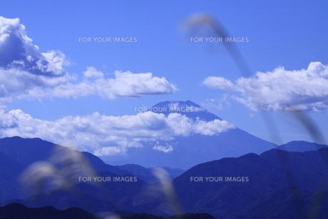 高尾山山頂からの富士山の写真素材 [FYI00452065]