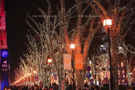 クリスマスイルミネーションの写真素材 [FYI00452086]