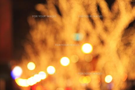 クリスマスイルミネーションの写真素材 [FYI00452148]