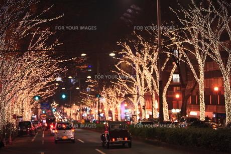 表参道  クリスマスイルミネーションの写真素材 [FYI00452166]