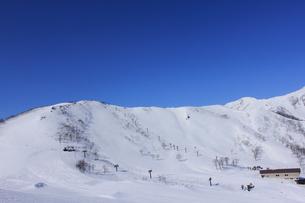 冬の天神平の写真素材 [FYI00452372]