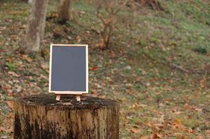 森のカフェの写真素材 [FYI00452426]