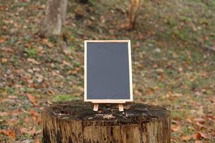 森のカフェの写真素材 [FYI00452433]