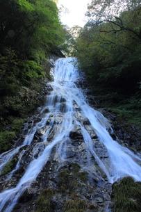 丸神の滝の素材 [FYI00452444]
