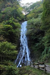 丸神の滝の素材 [FYI00452445]