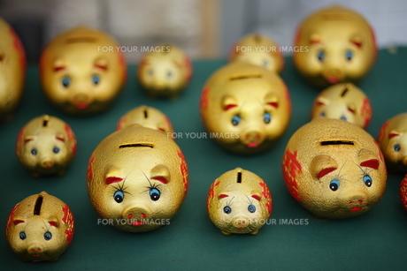 中華街で見つけた豚の貯金箱の素材 [FYI00452632]