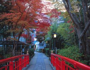 夕暮れの修善寺温泉の写真素材 [FYI00452726]