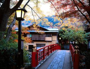 秋の修善寺温泉の写真素材 [FYI00452727]