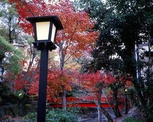 秋の修善寺温泉の写真素材 [FYI00452946]