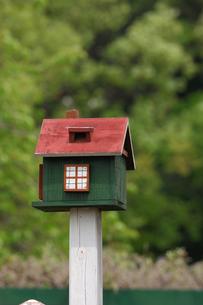 小鳥の巣箱の写真素材 [FYI00452955]