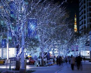 六本木ヒルズのクリスマスイルミネーションの写真素材 [FYI00453088]