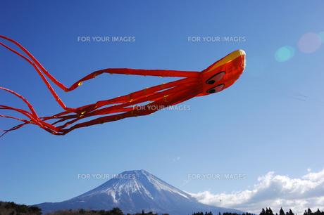 大凧と富士山の写真素材 [FYI00453163]