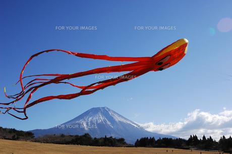 大凧と富士山の写真素材 [FYI00453164]