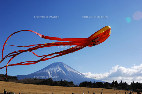 大凧と富士山の写真素材 [FYI00453165]