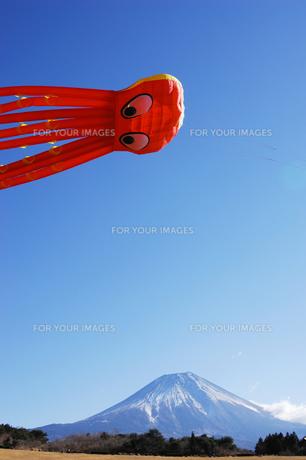 大凧と富士山の写真素材 [FYI00453166]