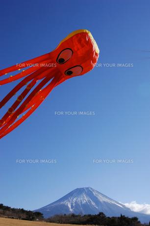 大凧と富士山の写真素材 [FYI00453168]