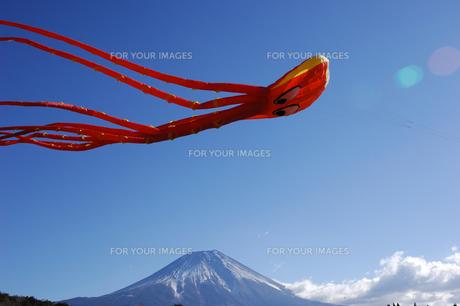 大凧と富士山の写真素材 [FYI00453171]