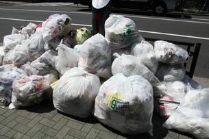 ゴミの写真素材 [FYI00453487]