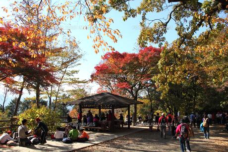 秋の高尾山山頂の写真素材 [FYI00453813]