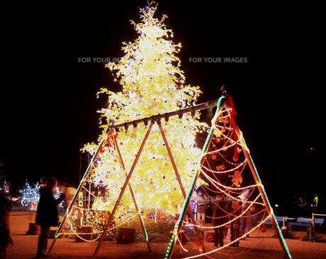 軽井沢 矢ケ崎公園のクリスマスツリーの写真素材 [FYI00453879]