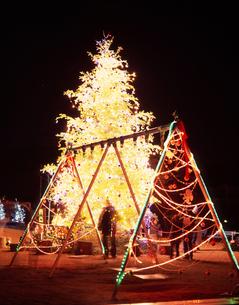 軽井沢 矢ケ崎公園のクリスマスツリーの写真素材 [FYI00453897]