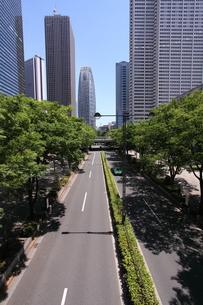 新宿高層ビル群と道の写真素材 [FYI00453914]