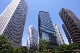 新宿高層ビル群の写真素材 [FYI00453945]