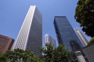 新宿高層ビル群の写真素材 [FYI00453953]