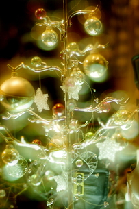 幻想的なツリーの写真素材 [FYI00454181]