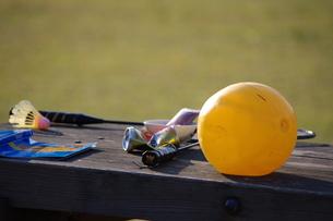公園で遊ぶの写真素材 [FYI00454184]