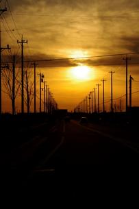 電柱が並ぶ夕日の写真素材 [FYI00454185]