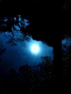 真昼の月の写真素材 [FYI00454198]
