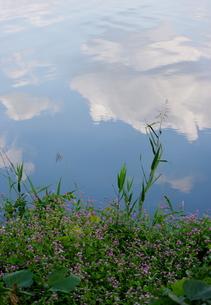 水面に映る雲の写真素材 [FYI00454229]