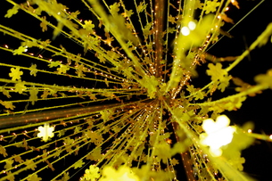 金箔のツリーの写真素材 [FYI00454246]