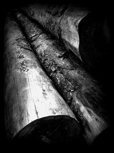 材木の素材 [FYI00454264]