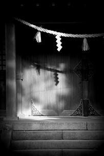 光り射す神社の写真素材 [FYI00454270]