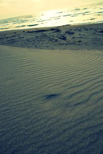 海岸の風紋の写真素材 [FYI00454288]
