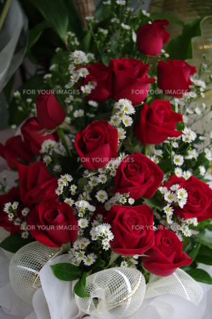 薔薇の花束の写真素材 [FYI00454422]