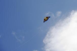 凧の写真素材 [FYI00454965]